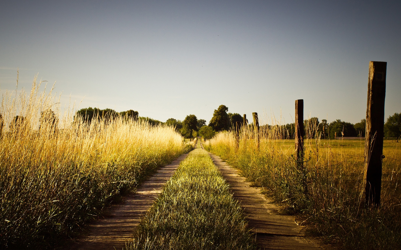 country summer tumblr hd desktop wallpaper, instagram photo