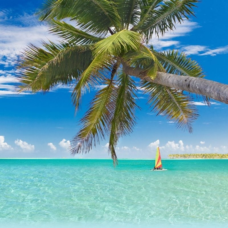 10 Top Beautiful Beaches In The World Wallpaper FULL HD 1080p For PC Desktop 2021 free download cozumel beach as most beautiful beach in the world e29da4 4k hd desktop 800x800