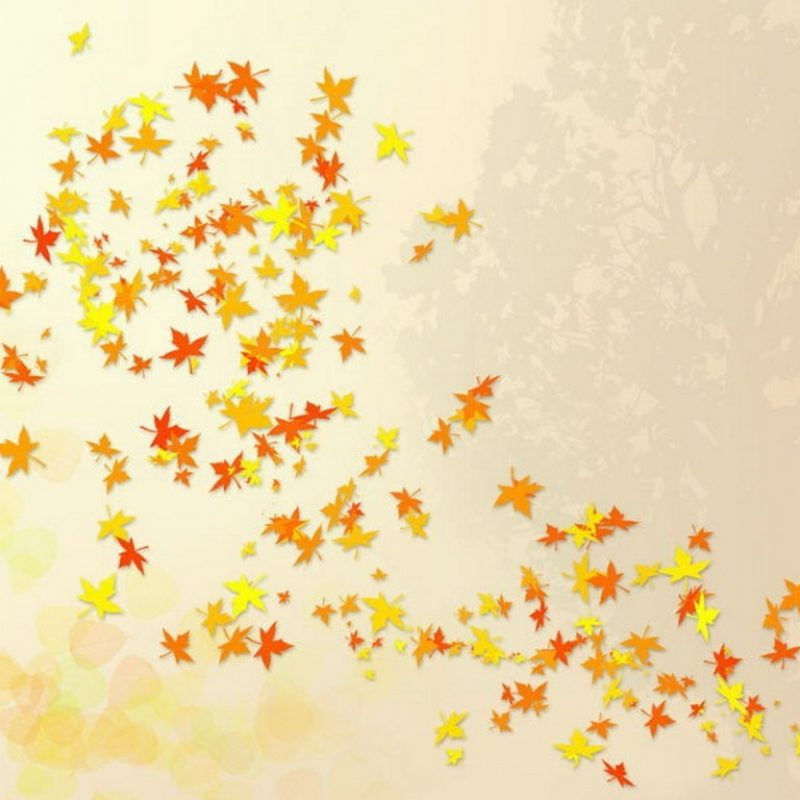 10 Most Popular Cute Fall Computer Wallpaper FULL HD 1080p For PC Background 2020 free download cute autumn wallpaper 800x800