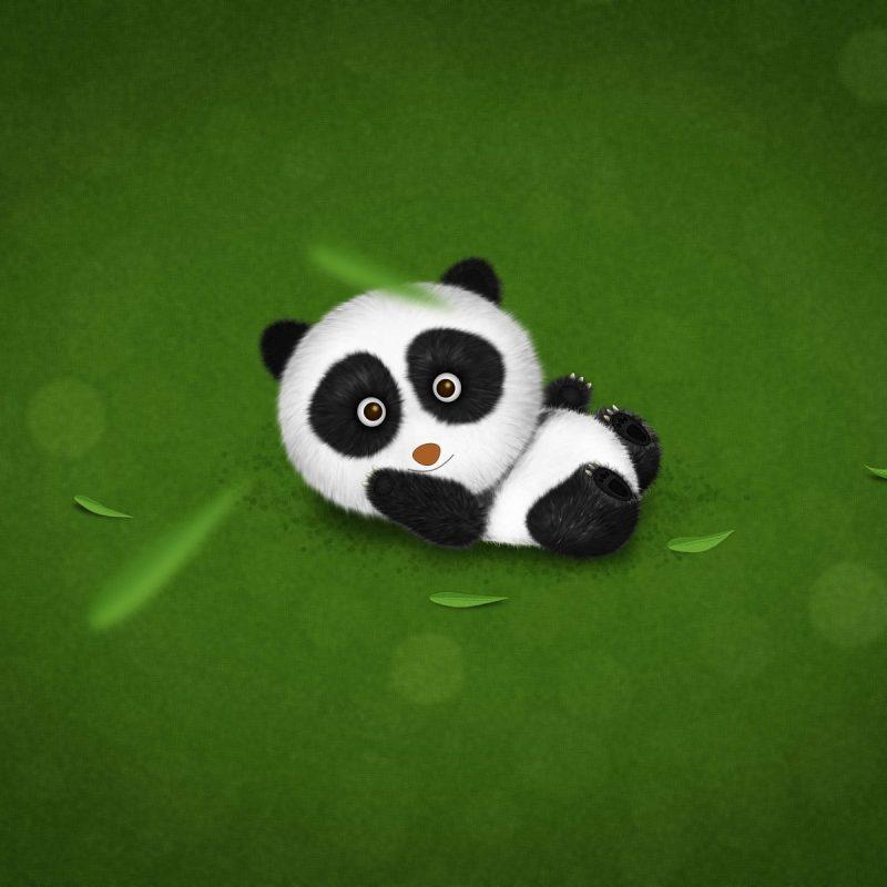10 Latest Cute Baby Panda Wallpaper FULL HD 1080p For PC Desktop 2020 free download cute baby panda wallpaper 1264286 800x800