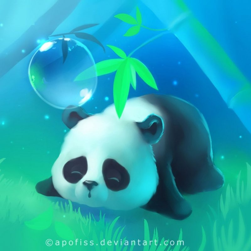 10 Latest Cute Baby Panda Wallpaper FULL HD 1080p For PC Desktop 2021 free download cute baby panda wallpaper wide with high resolution wallpaper cute 800x800