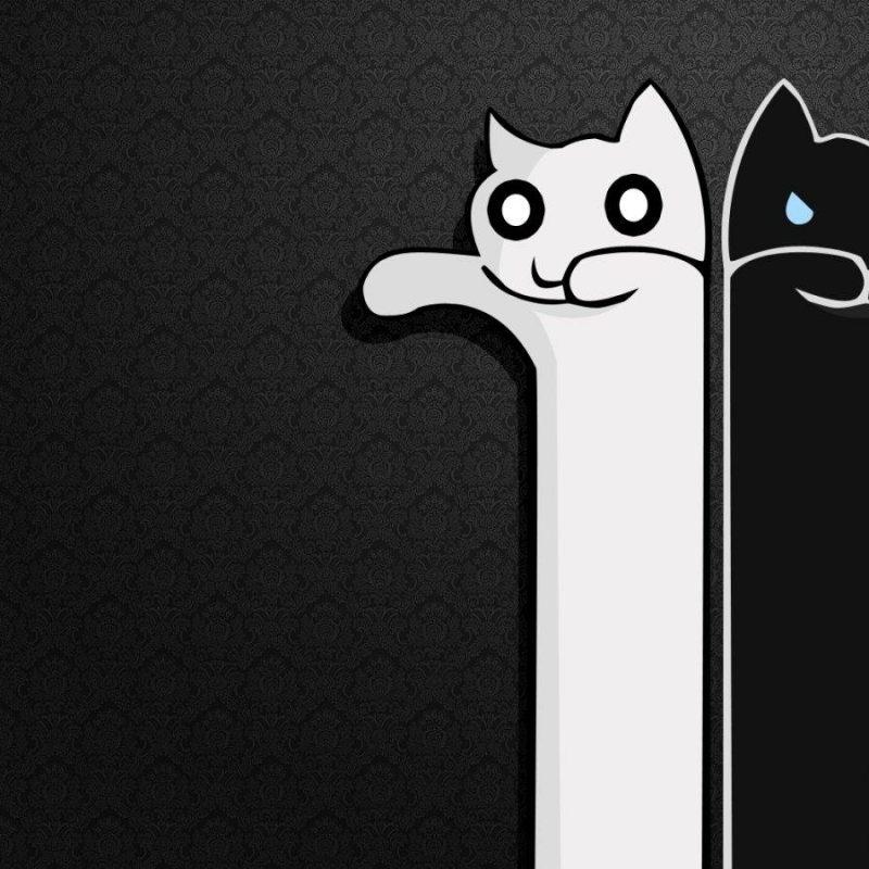 10 Top Black And White Cute Wallpaper FULL HD 1080p For PC Desktop 2020 free download cute black wallpapers wallpaper hd wallpapers pinterest black 1 800x800