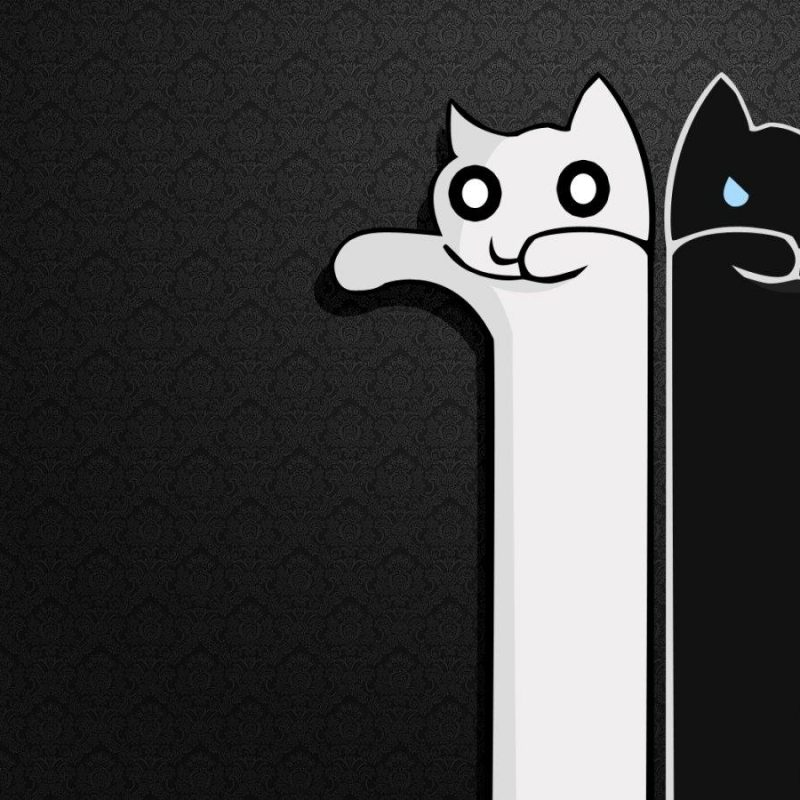 10 Top Cute Black And White Wallpapers FULL HD 1920×1080 For PC Desktop 2021 free download cute black wallpapers wallpaper hd wallpapers pinterest black 800x800