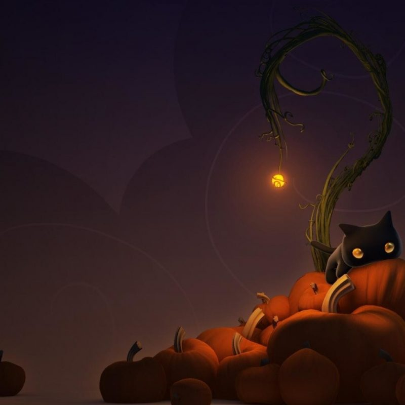 10 Top Cute Cat Halloween Wallpaper FULL HD 1920×1080 For PC Background 2018 free download cute cat halloween wallpaper 65 images 800x800