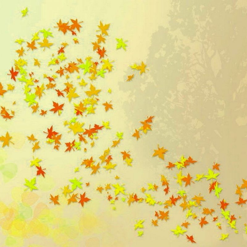 10 Most Popular Cute Fall Wallpaper For Desktop FULL HD 1920×1080 For PC Background 2021 free download cute fall wallpaper backgrounds tianyihengfengfree download high 800x800