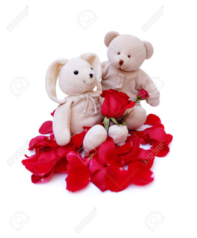 10 Latest Cute Teddy Bear Pics FULL HD 1080p For PC Background 2018 free download cute teddy bear hold red roses for a special someone on a specific 660x800