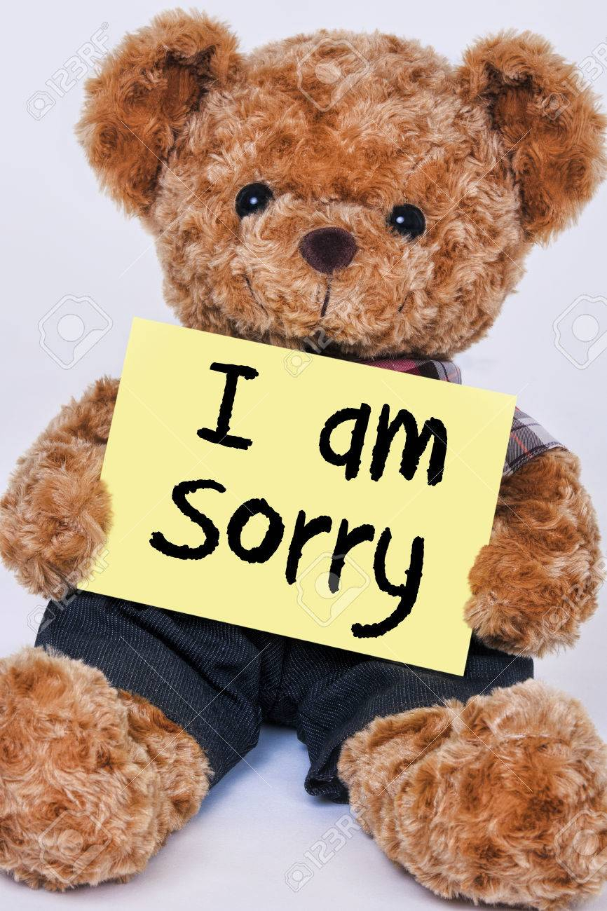 cute teddy bear holding a yellow sign that reads i am sorry isolated