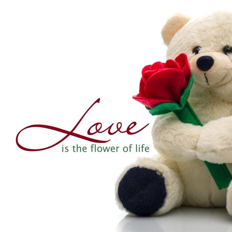 10 New Teddy Bear Love Image FULL HD 1080p For PC Background 2018 free download cute teddy bear love wallpaper 44669 800x800
