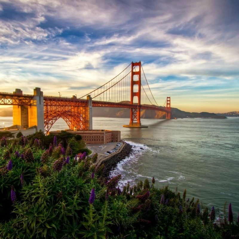 10 Best San Francisco Wallpapers Hd FULL HD 1920×1080 For PC Desktop 2021 free download daily wallpaper summer in san francisco i like to waste my time 2 800x800