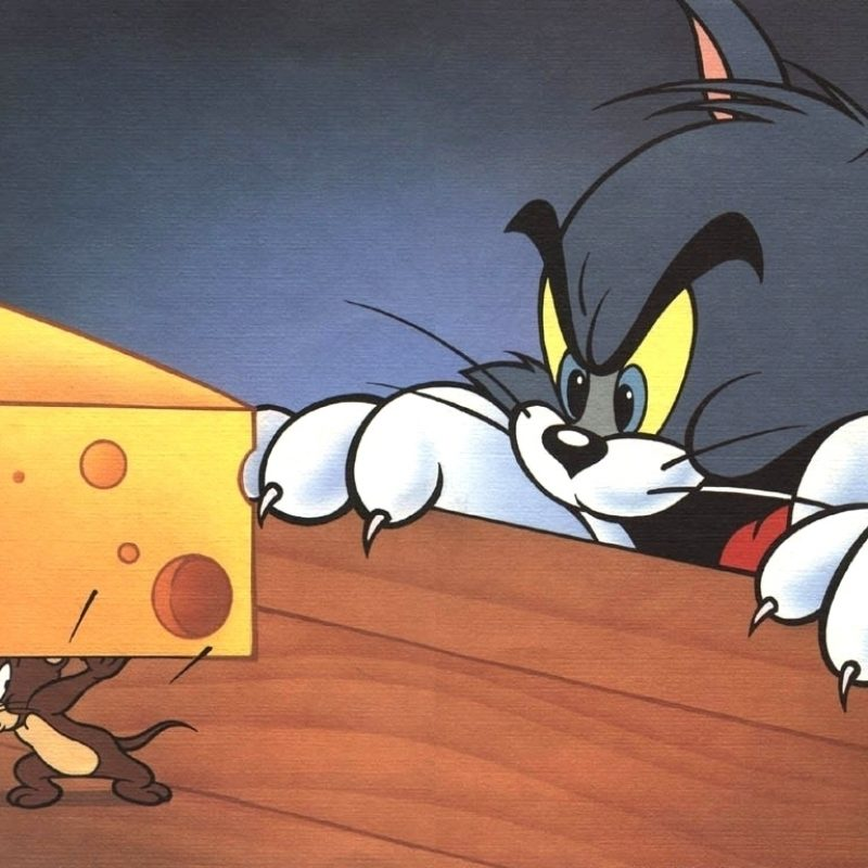10 Best Tom And Jerry Wallpaper FULL HD 1080p For PC Background 2018 free download dan dare tom and jerry wallpaper 1024 x 768 pixels 800x800