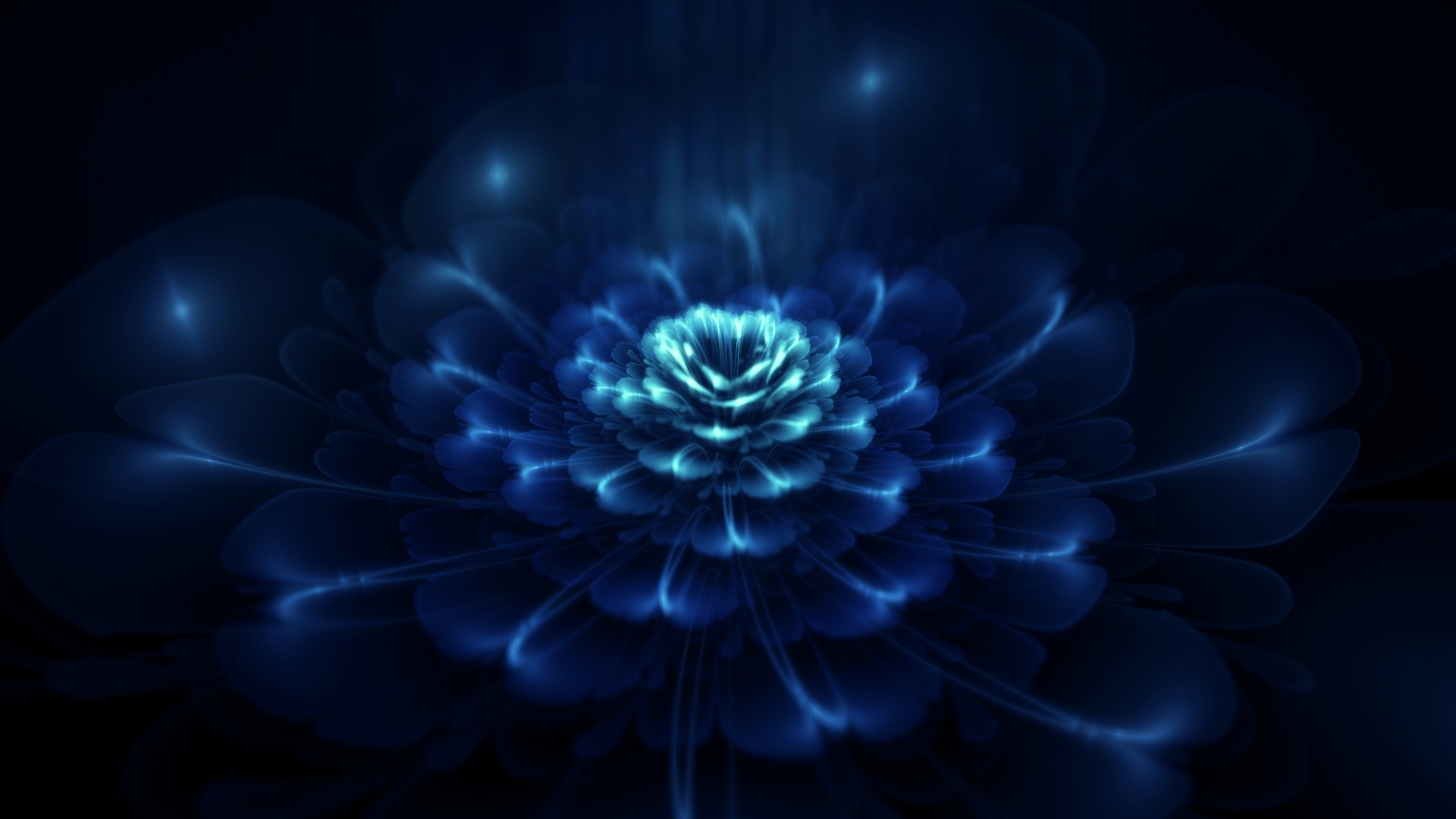 dark blue flowers wallpaper - 1395249