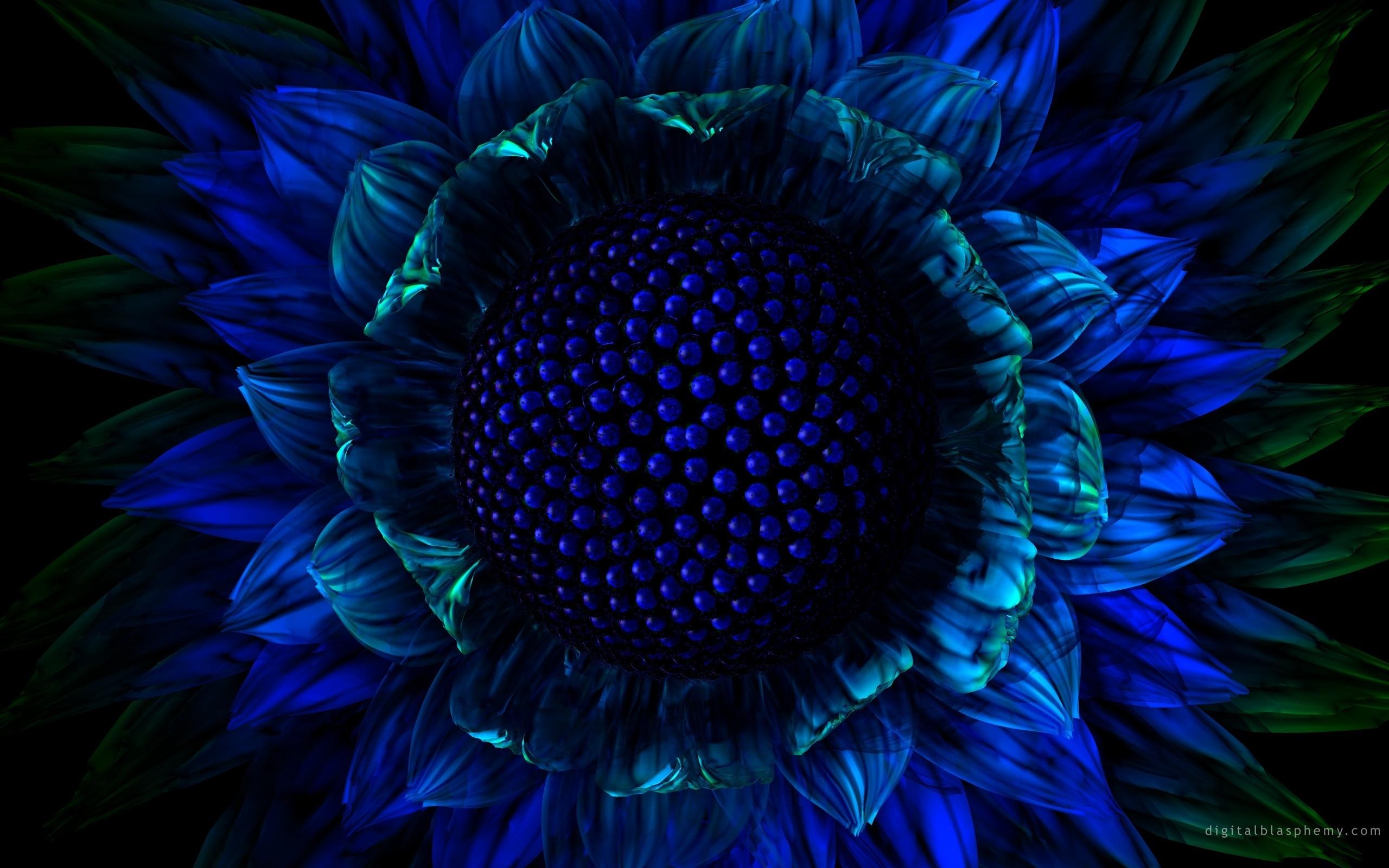 dark blue flowers wallpaper #16151 wallpaper | cool wallpaper