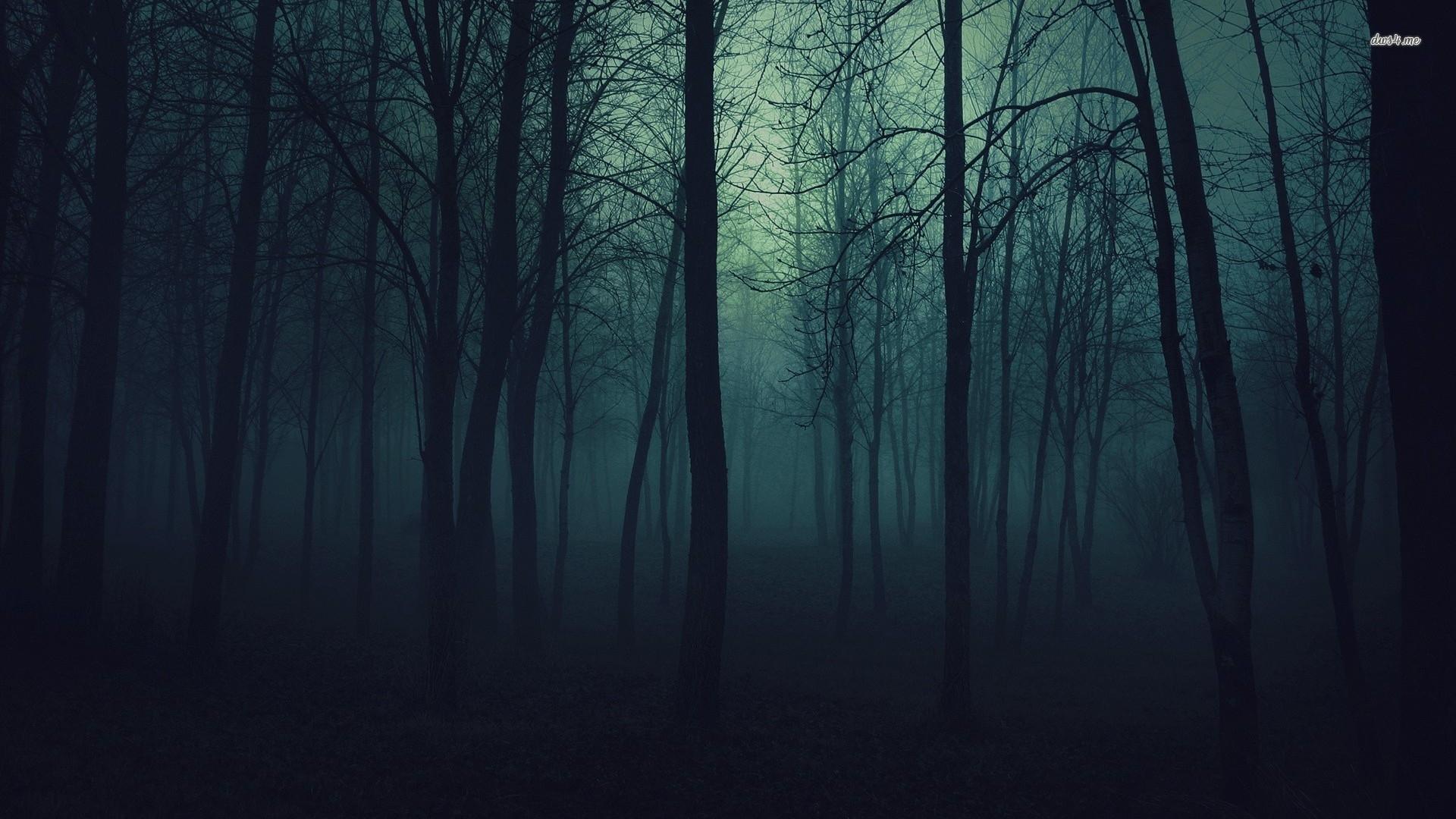 dark forest tumblr - Поиск в google | tattoos | pinterest | dark forest