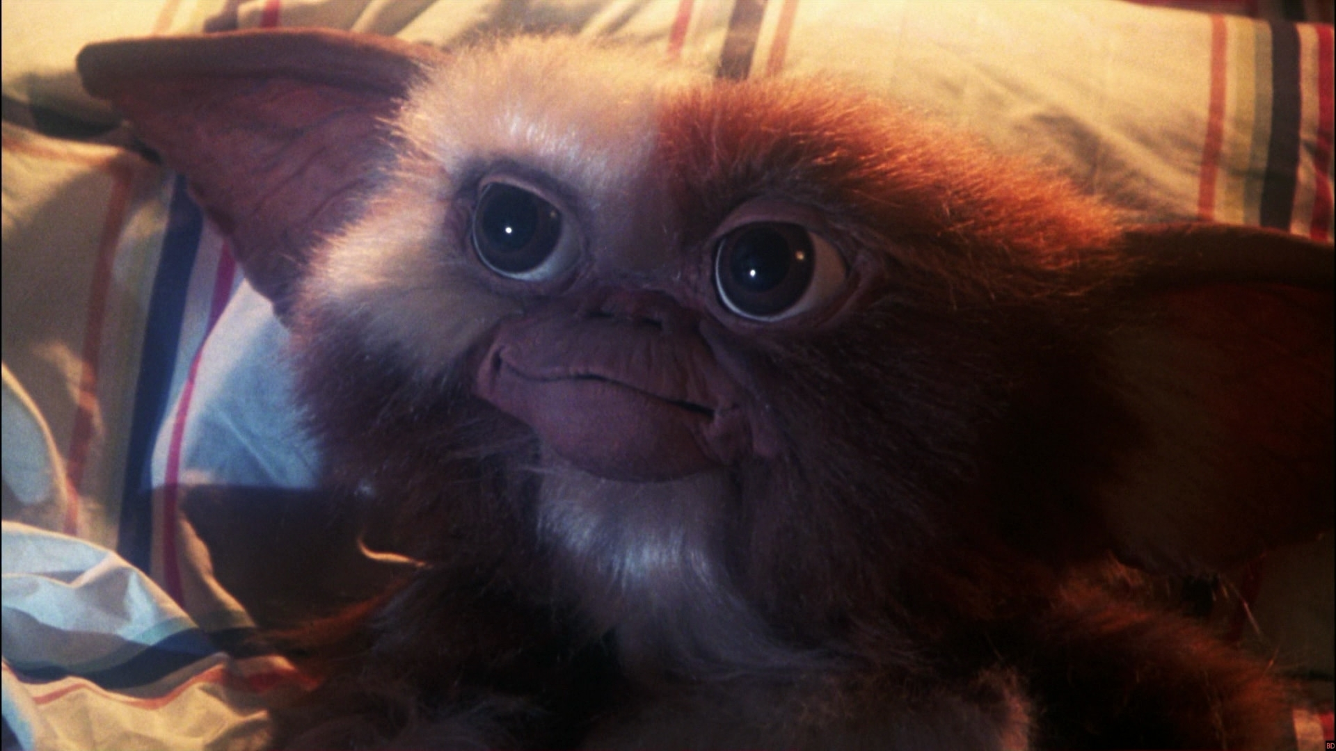 dark 'gremlins 3' script ponders the murder of gizmo - bloody disgusting
