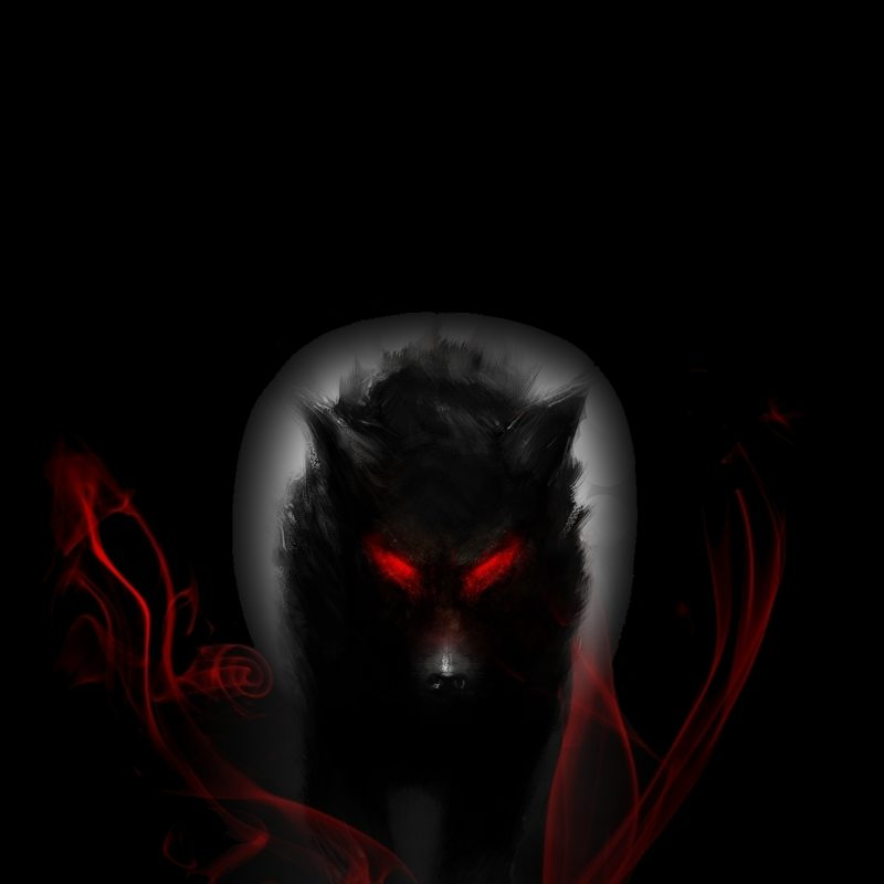 10 New Dark Wolf Wallpaper Hd FULL HD 1920×1080 For PC Desktop 2021 free download dark wolf wallpaper image beautiful images hd pictures desktop 800x800