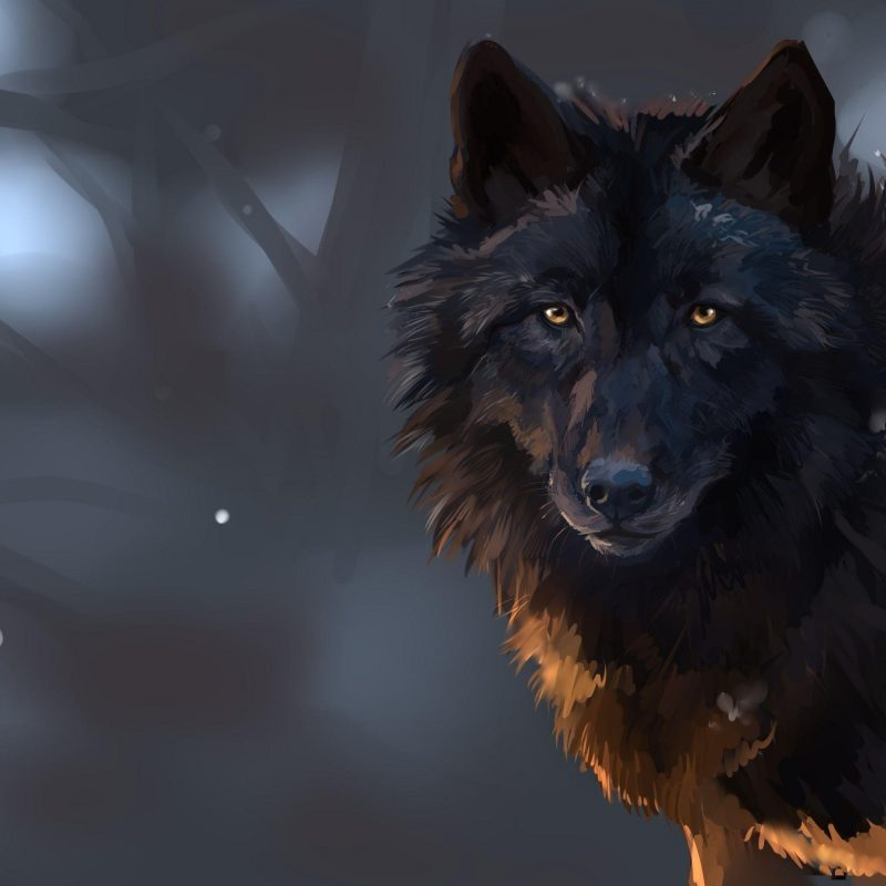 10 New Dark Wolf Wallpaper Hd FULL HD 1920×1080 For PC Desktop 2021 free download dark wolf wallpapers wallpaper cave 800x800