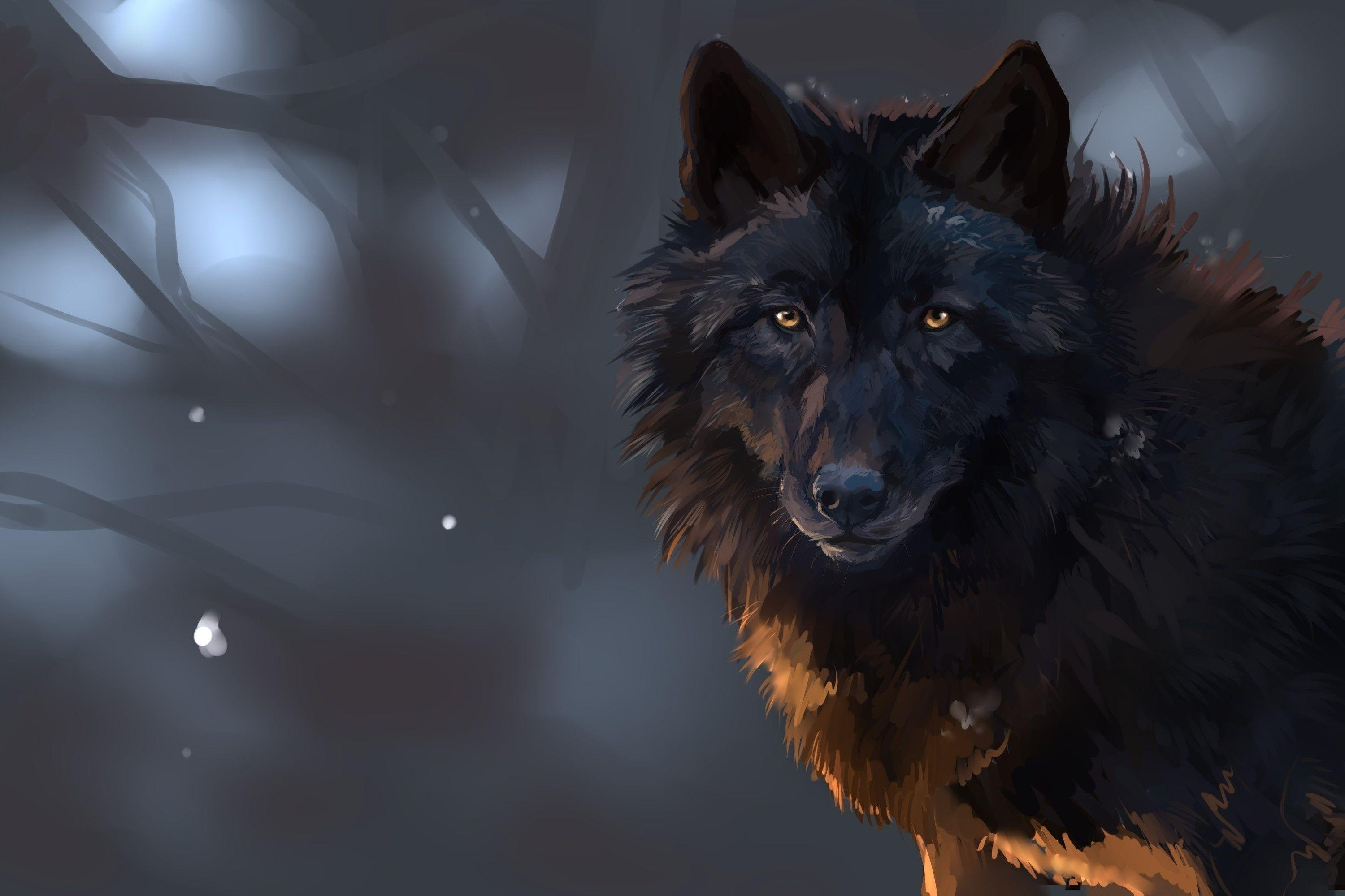 dark wolf wallpapers - wallpaper cave