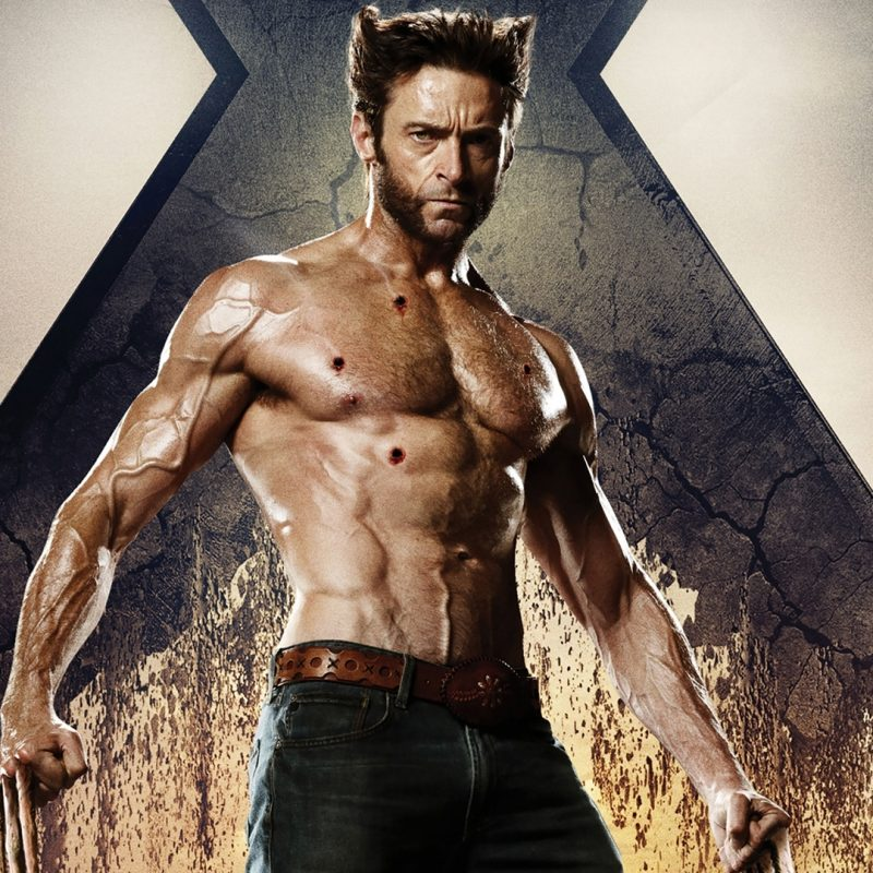 10 Best Wolverine Images Hugh Jackman FULL HD 1080p For PC Background 2020 free download de x men a logan en 17 ans le wolverine de hugh jackman a beaucoup 800x800
