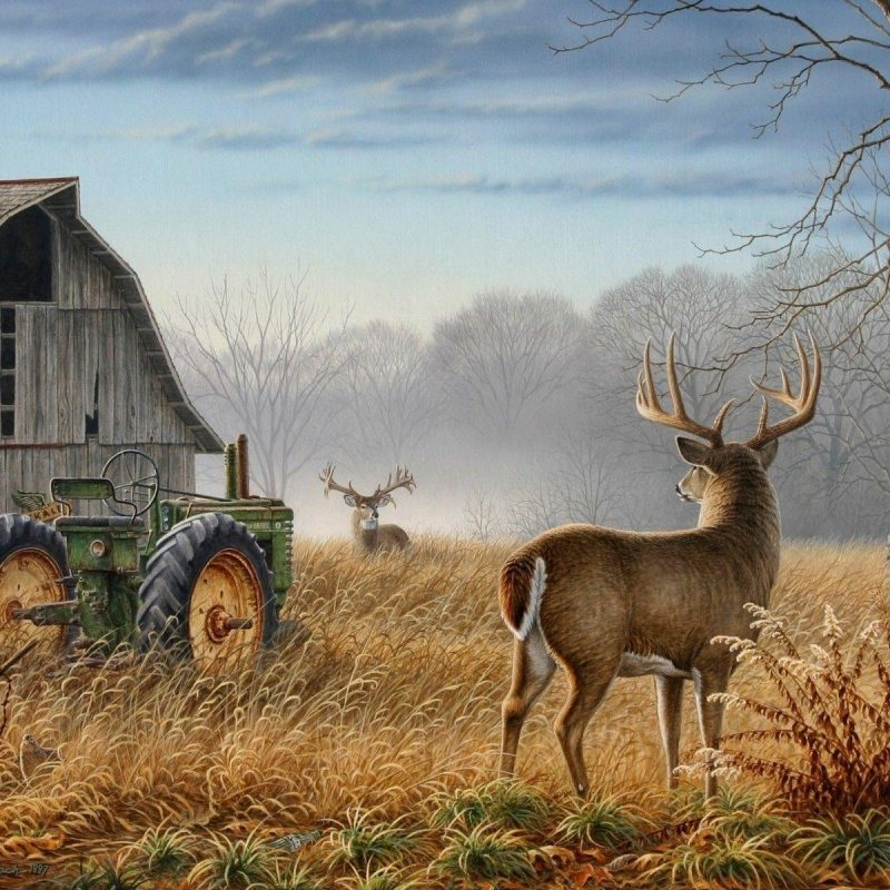 10 Best Deer Hunting Desktop Wallpaper FULL HD 1080p For PC Desktop 2021 free download deer hunting backgrounds wallpaper cave 800x800