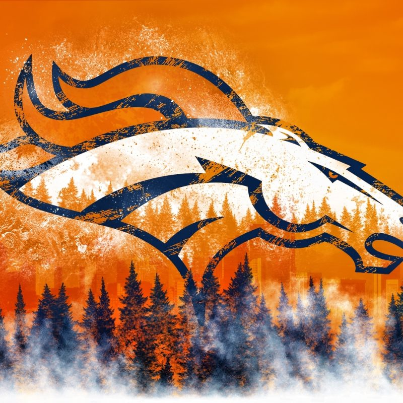 10 Most Popular Denver Broncos Logo Hd FULL HD 1080p For PC Desktop 2018 free download denver broncos wallpaper 49328 1920x1080 px hdwallsource 800x800