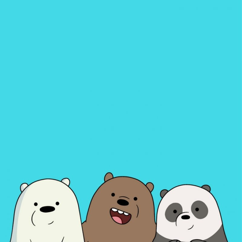 10 Top We Bare Bears Wallpaper FULL HD 1920×1080 For PC Background 2018 free download desenhos iphone wallpaper pinterest bare bears bears and 1 800x800
