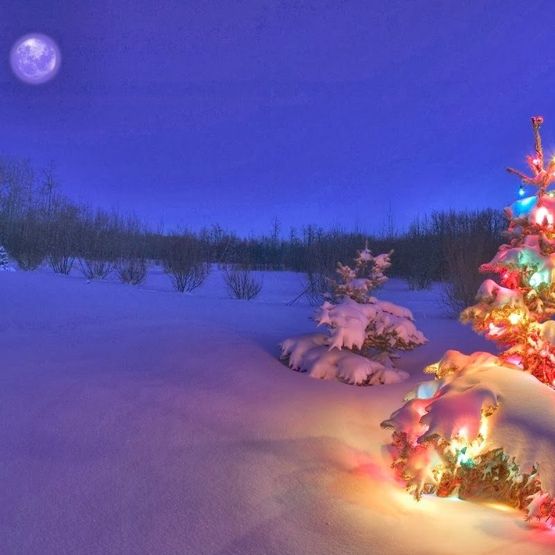 10 Top Christmas Scene Wallpaper Backgrounds FULL HD 1920×1080 For PC Background 2020 free download desktop backgrounds 4u christmas scenes 2 800x800