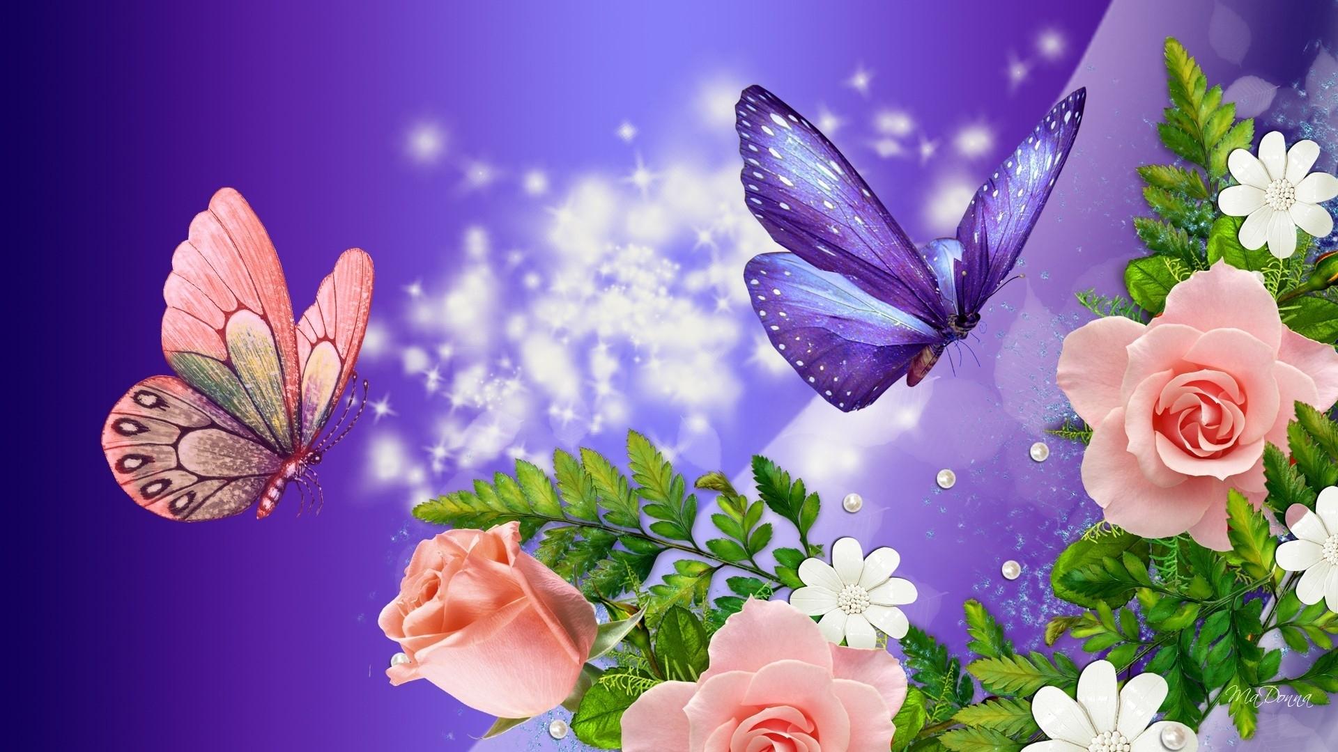 desktop hd nature flower rose ilcom on wallpaper images for