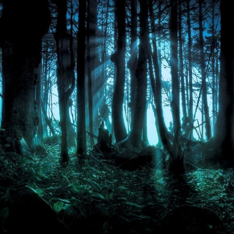 10 Best Scary Desktop Backgrounds Hd FULL HD 1080p For PC Background 2020 free download desktop scary wolf pics wallpaper 800x800