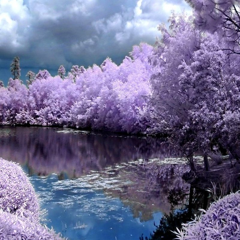 10 New Free Spring Screensavers And Wallpaper FULL HD 1920×1080 For PC Desktop 2020 free download %name
