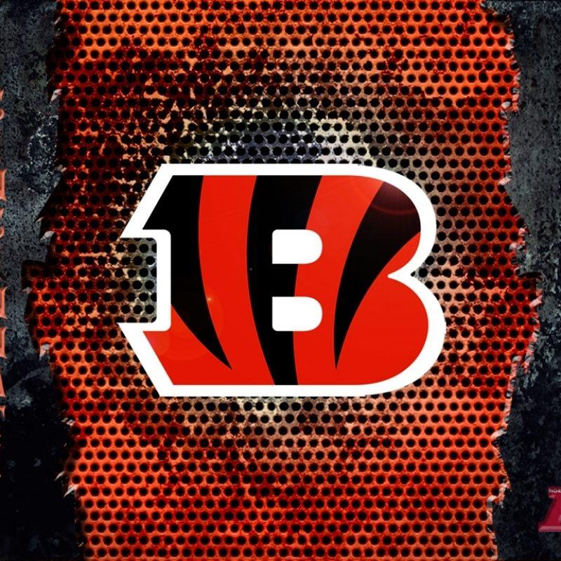 10 New Cincinnati Bengals Hd Wallpaper FULL HD 1080p For PC Background 2020 free download desktop wallpaper cincinnati bengals 800x800
