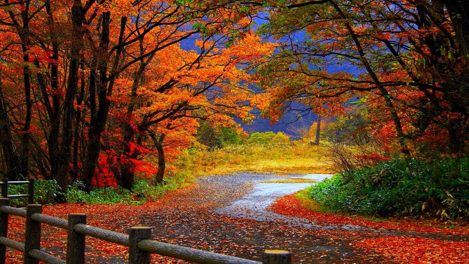 desktop wallpaper fall scenes ·①
