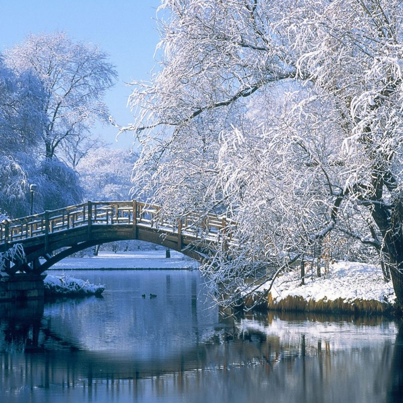 10 Most Popular Winter Landscape Desktop Wallpaper FULL HD 1080p For PC Background 2020 free download desktop wallpaper winter landscapes 46 images 1 800x800