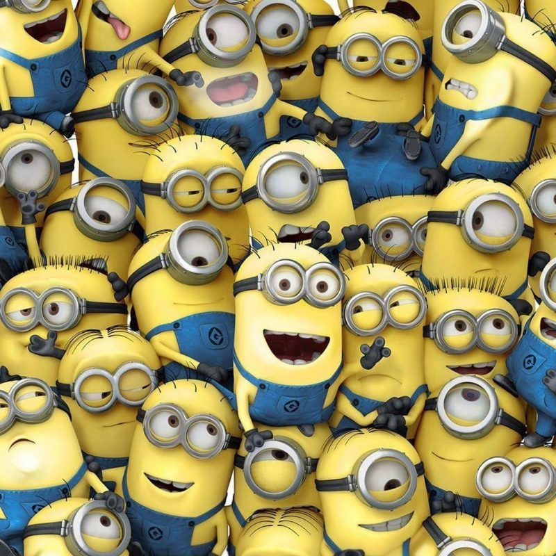 10 New Minion Wallpaper For Android FULL HD 1920×1080 For PC Desktop 2020 free download despicable me minion wallpapers wallpaper cave 800x800