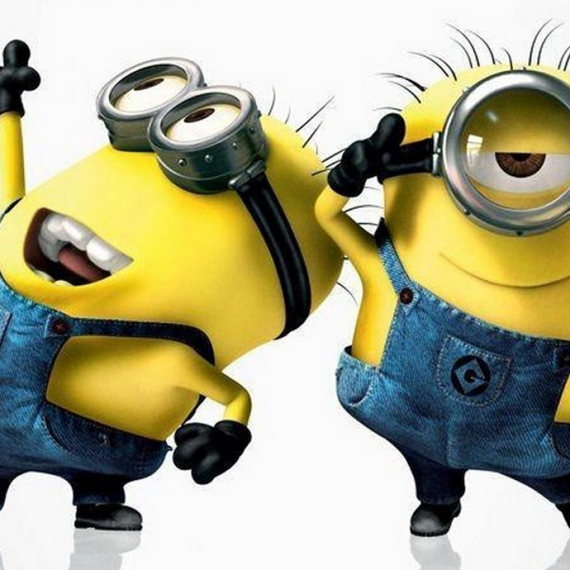 10 New Despicable Me Minions Wallpaper FULL HD 1920×1080 For PC Desktop 2018 free download despicable me wallpaper 726 download free 800x800
