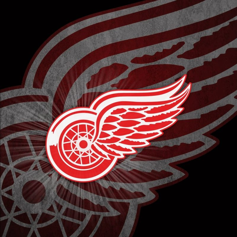 10 New Detroit Red Wings Iphone Wallpaper FULL HD 1080p For PC Desktop 2020 free download detroit red wings iphone 6 plus wallpaper wallpaper rocket 800x800
