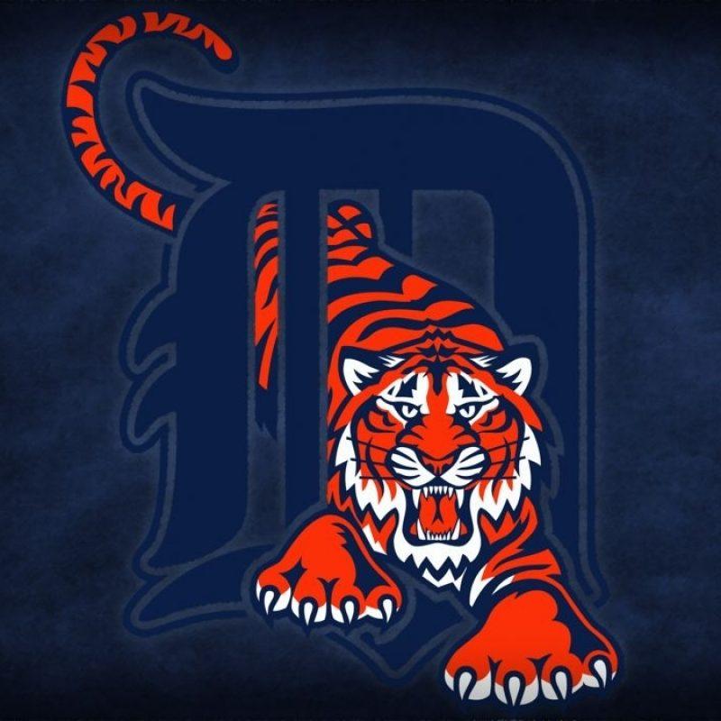 10 Latest Detroit Tigers Logo Wallpaper FULL HD 1080p For PC Desktop 2018 free download detroit tigers baseball mlb y wallpaper 2541x1500 158514 800x800