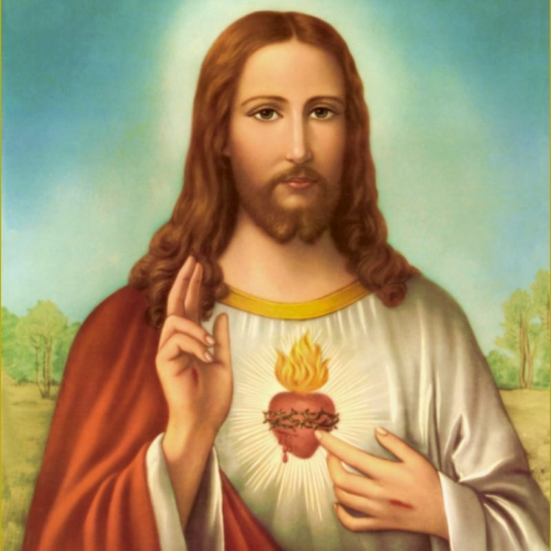 10 Most Popular Picture Of The Sacred Heart Of Jesus FULL HD 1920×1080 For PC Background 2020 free download devotion to the sacred heart 800x800