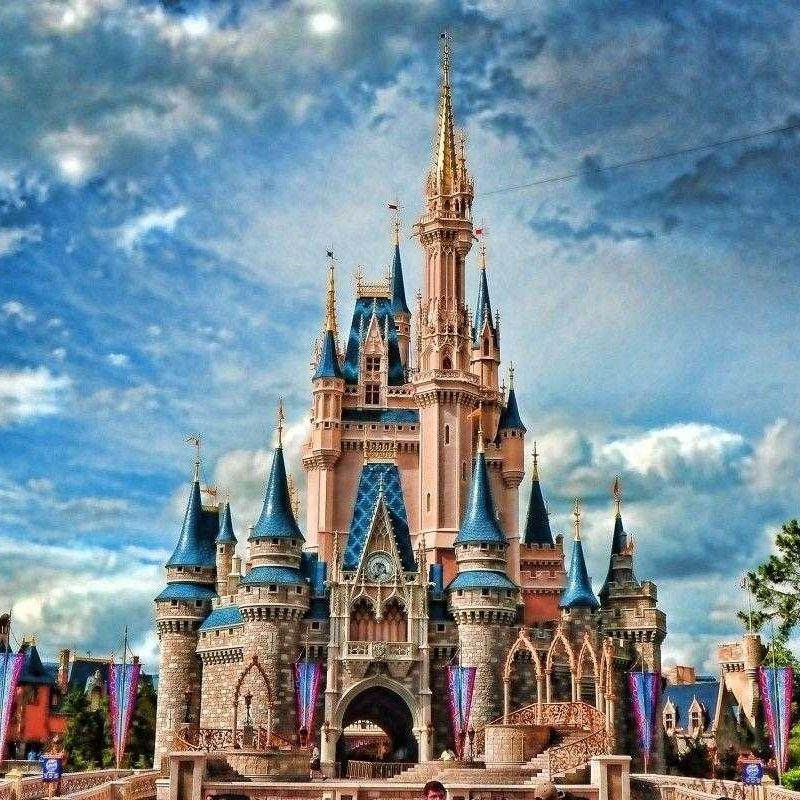 10 Top Walt Disney World Desktop Wallpaper FULL HD 1080p For PC Background 2020 free download disney castle backgrounds wallpaper trends with walt world images 1 800x800