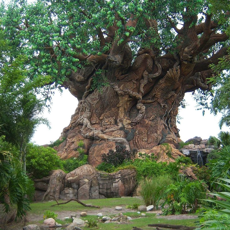 10 Latest Disney Animal Kingdom Wallpaper FULL HD 1920×1080 For PC Background 2020 free download disney wallpaper free disney wallpapers animal kingdom 800x800