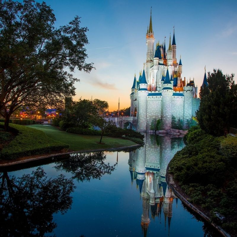 10 Most Popular Walt Disney World Castle Wallpaper FULL HD 1080p For PC Background 2020 free download disneyland castle walt disney world wallpapers media file 800x800