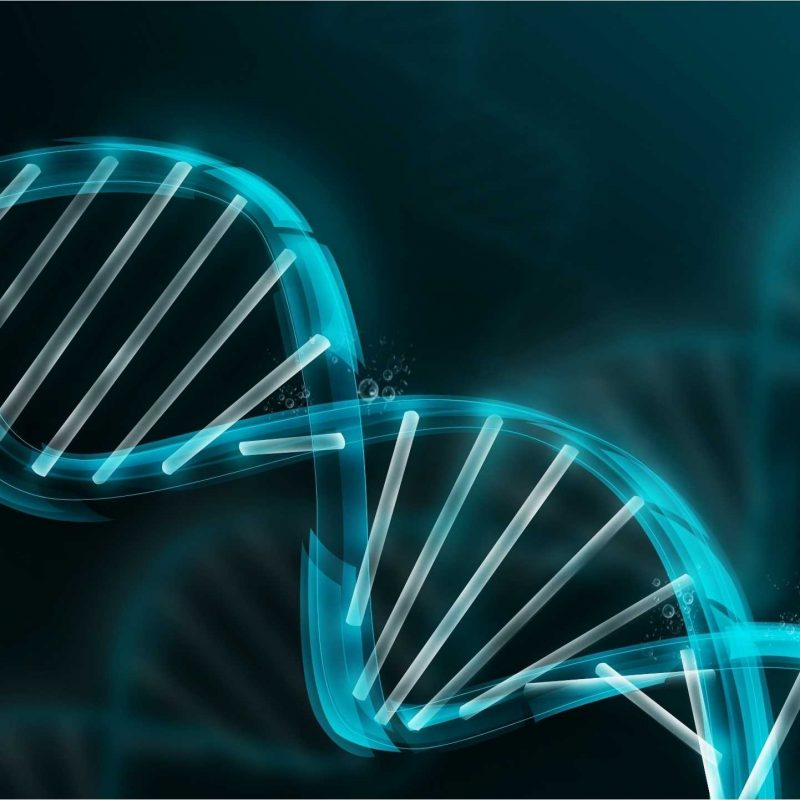 10 Top Dna Wallpaper High Resolution FULL HD 1080p For PC Background 2018 free download dna wallpapers top hd dna wallpapers ng high resolution 1 800x800