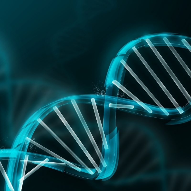10 Top Dna Wallpaper High Resolution FULL HD 1080p For PC Background 2018 free download dna wallpapers top hd dna wallpapers ng high resolution 800x800