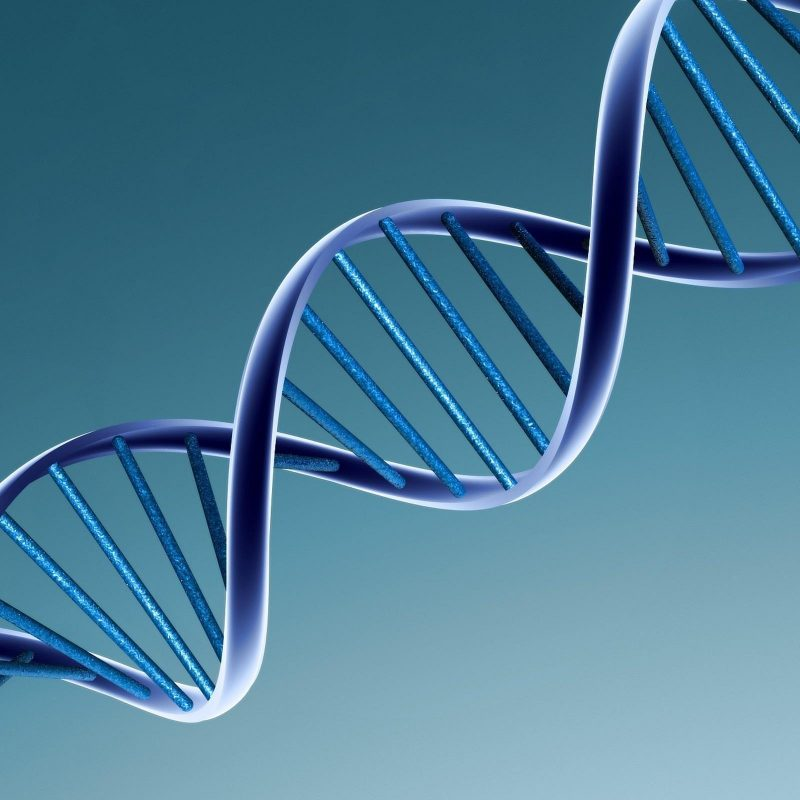 10 Top Dna Wallpaper High Resolution FULL HD 1080p For PC Background 2018 free download dna wallpapers wallpaper cave 800x800