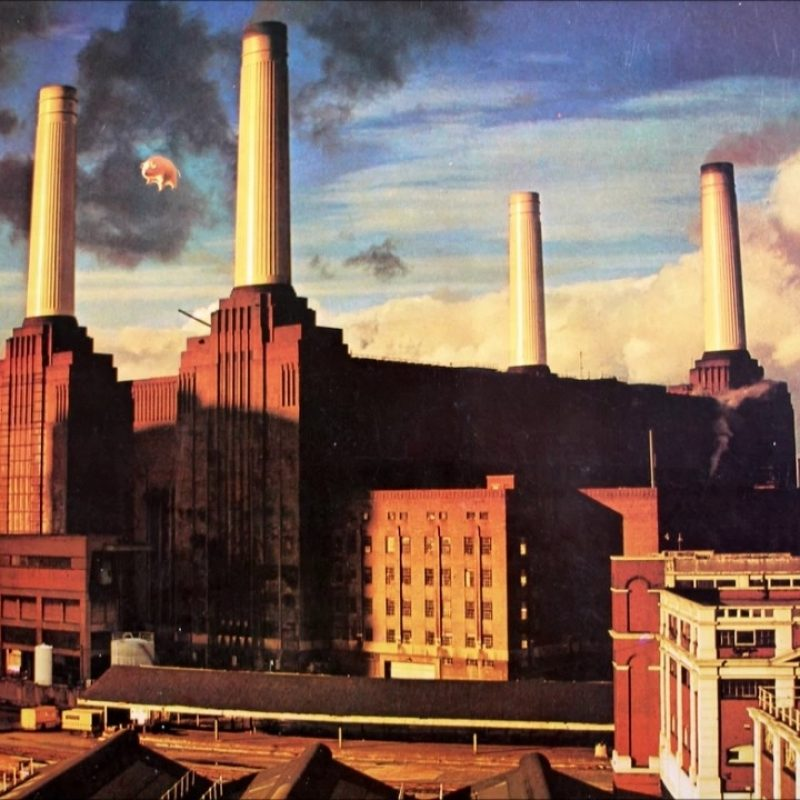 10 New Pink Floyd Animals Hd FULL HD 1920×1080 For PC Background 2020 free download dogs pink floyd 1977 youtube 800x800