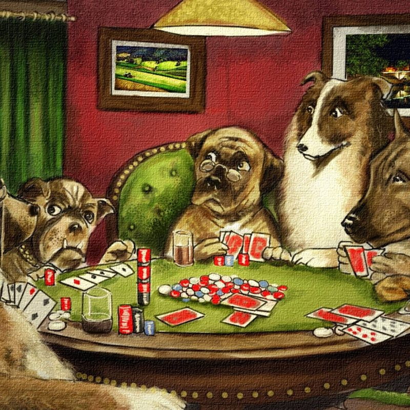 10 New Pictures Of Dogs Playing Cards FULL HD 1080p For PC Desktop 2018 free download dogs playing poker wallpaper 62 images 800x800