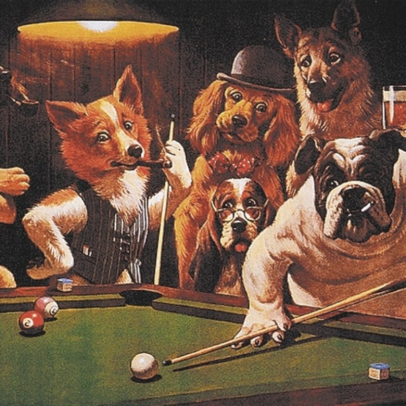 10 Top Dogs Playing Poker Wallpaper FULL HD 1920×1080 For PC Desktop 2018 free download dogs playing poker wallpaper for the beautiful dogs playing poker 800x800
