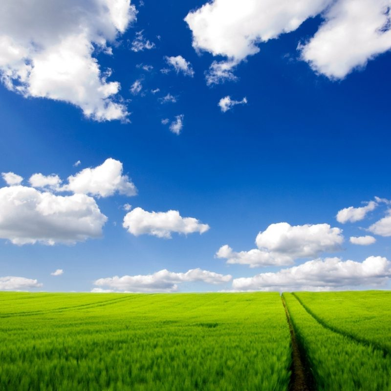 10 Top Windows Xp Wallpaper 1080P FULL HD 1080p For PC Background 2018 free download download 45 hd windows xp wallpapers for free 5 800x800