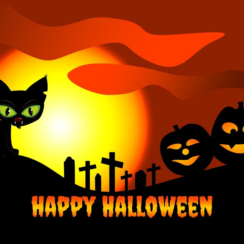 10 Top Cute Cat Halloween Wallpaper FULL HD 1920×1080 For PC Background 2018 free download download free hello kitty halloween wallpapers pixelstalk 800x800