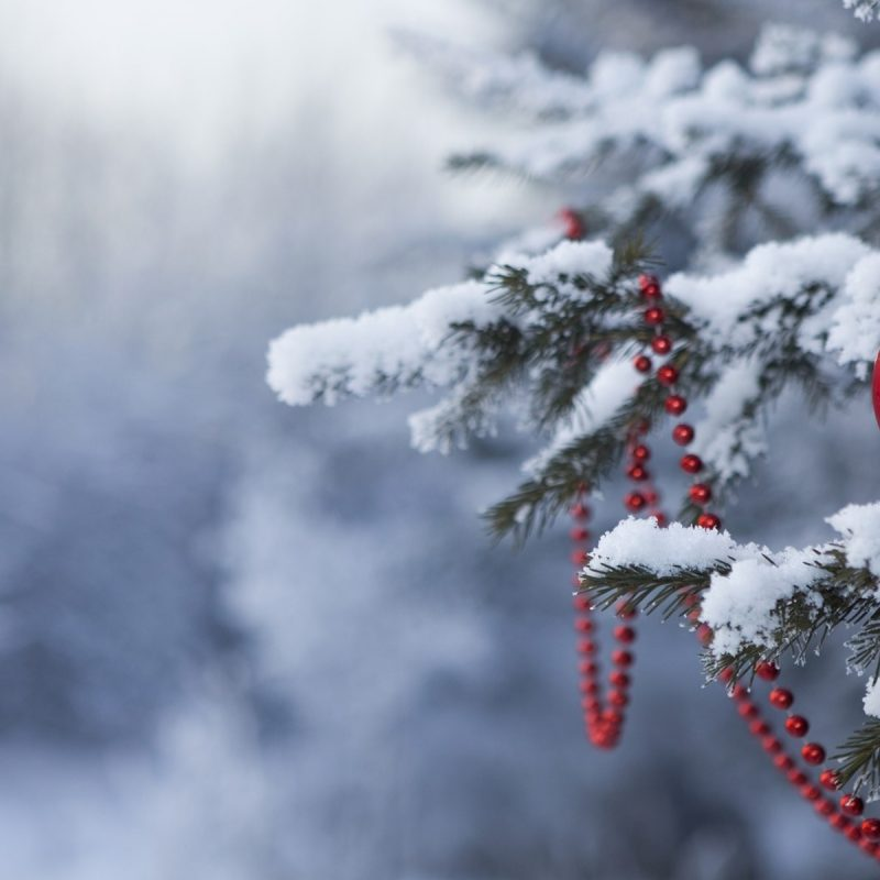 10 New Winter Holiday Wallpaper Hd FULL HD 1920×1080 For PC Desktop 2021 free download %name