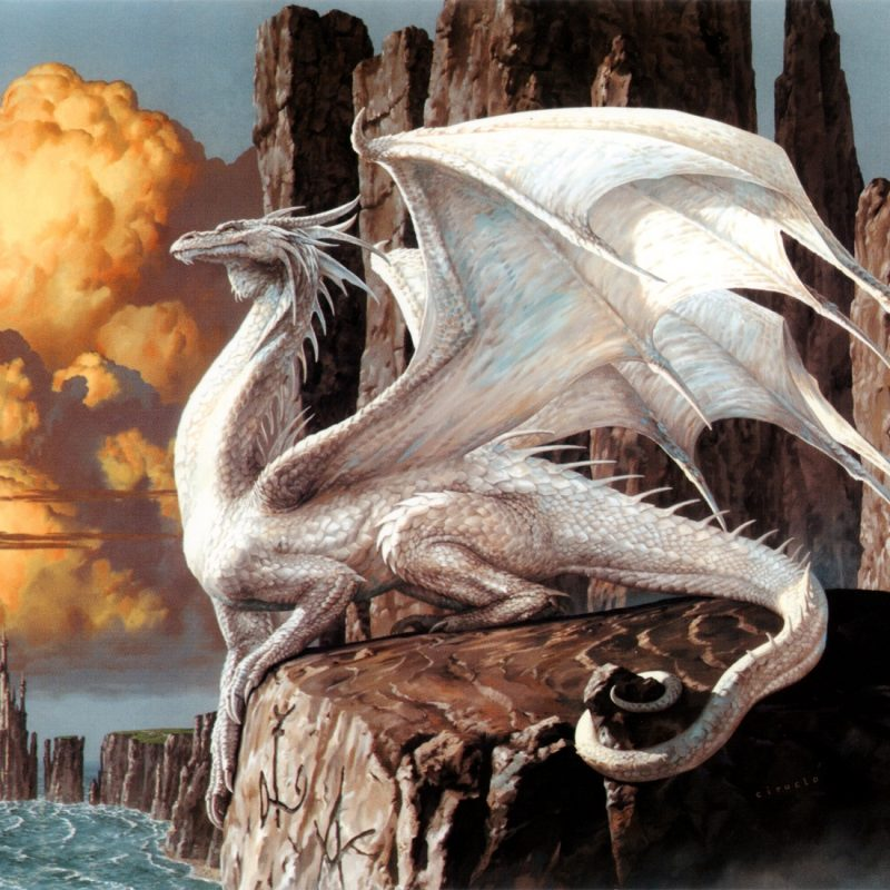 10 Top White Dragon Wallpaper Hd FULL HD 1920×1080 For PC Background 2021 free download download magic the gathering art white dragon wallpaper high 800x800